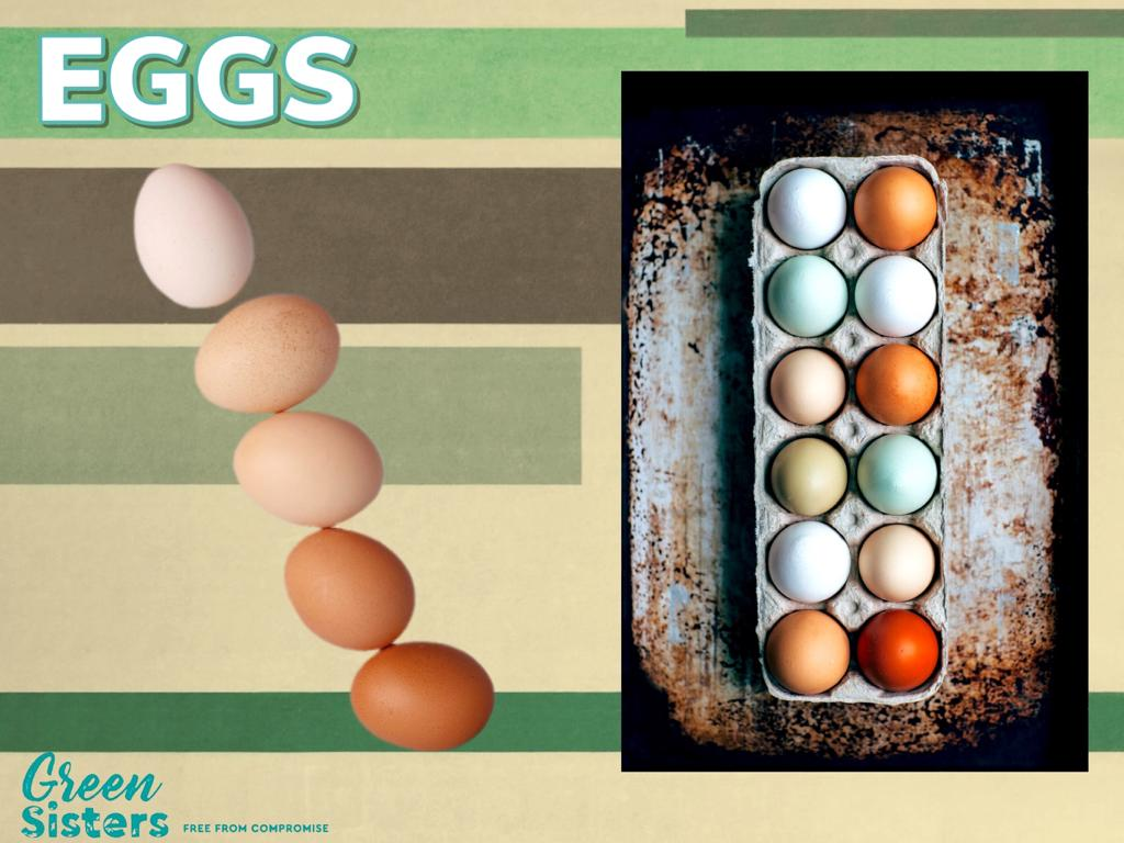 Some assorted images of eggs, both single and in a carton.